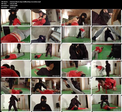 victoria-black-ninja-ballbusting-execution-mp4.jpg