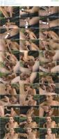 75959920_spermsuckers_videos_summer-love-mp4.jpg