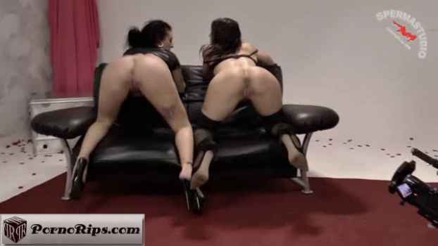 sperma-studio-17-11-23-jessy-jay-and-nora-wildlife-fuck-my-hole.png