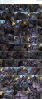 76191459_sweetheartvideo_lesbianhitchhiker_s03_nicoleray_lexibelle_720p-mp4.jpg